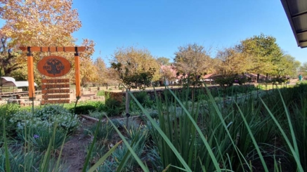 Garden_Feature(1)_at_Irene_Dairy_Farm_done_by_the_garden_group