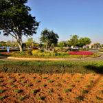 Garden_design_circle(2)_at kolonade_retail_park_done_by_the_garden_group