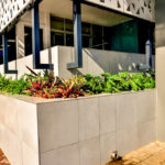 Garden_feature(1)_at_Zuid-Afrikaans_Hospital_done_by_the_garden_group