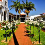 Walkway_after_at_Zuid-Afrikaans_Hospital_done_by_the_garden_group