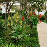 Garden_Feature_at_Woodlands_Lifestyle_Estate_by_the_garden_group
