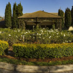 Garden_Feature_at_African_Pride_Irene_Country_Lodge_done_by_the_garden_group